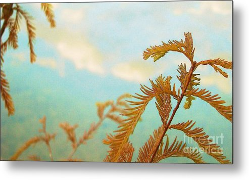 Weeds Metal Print featuring the photograph The Beauty Of Weeds by Steven Lebron Langston