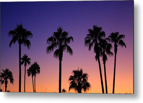 Sunsets Metal Print featuring the photograph Colorful Tropical Palm Tree Sunset by James BO Insogna