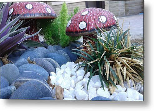 Pebbles Mashrooms In Garden. Metal Print featuring the photograph Mashrooms by Maha Ahmed