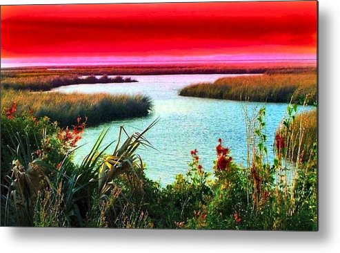 Crimson Metal Print featuring the photograph A Sunset Crimsoned by Julie Dant