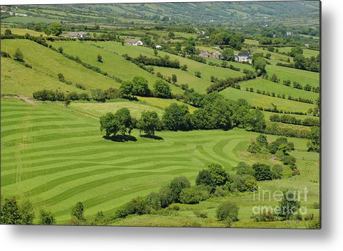 County Antrim Metal Print featuring the photograph Fields In Northern Ireland by John Shaw