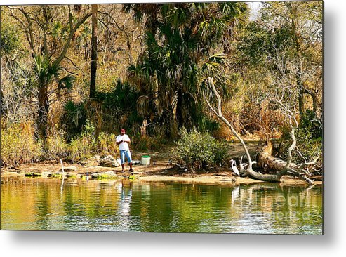 Southern Usa Metal Print featuring the photograph Patience by Laura Mace Rand