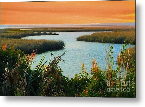 St. Marks Metal Print featuring the photograph Dreamsicle Sunset by Julie Dant