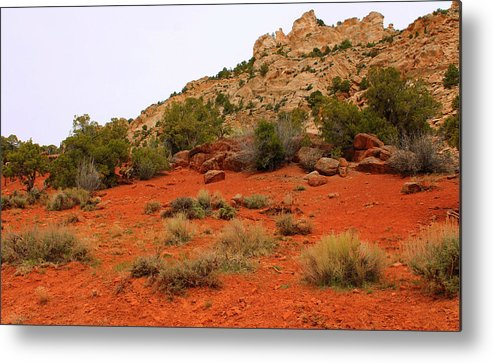 Landscape Metal Print featuring the photograph Reveal by Donna Duckworth