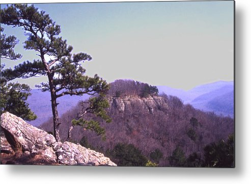 Metal Print featuring the photograph Sams Throne19 by Curtis J Neeley Jr