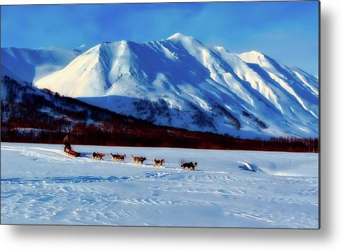 Russia Metal Print featuring the photograph Sledding In Russia by Pixabay