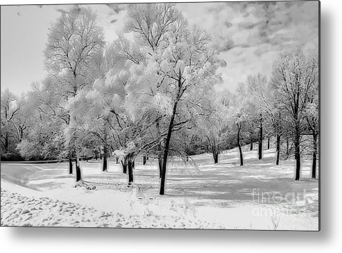 Snow In South Park Metal Print featuring the photograph Snow In South Park by Luther Fine Art