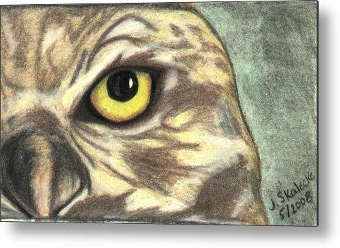 Owl Metal Print featuring the drawing Watchful Eye by Jennifer Skalecke