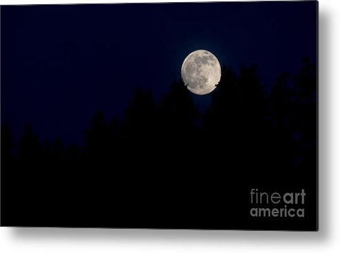 Moon Metal Print featuring the photograph Through The Trees by Connor Hauenstein