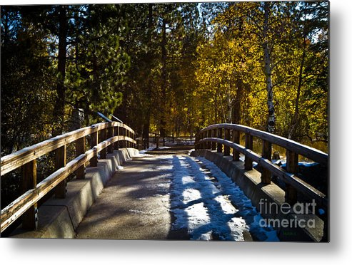 Falling Shadows Metal Print featuring the photograph Falling Shadows by Mitch Shindelbower