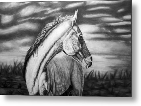 Canvas Metal Print featuring the drawing Looking Back by Glen Powell