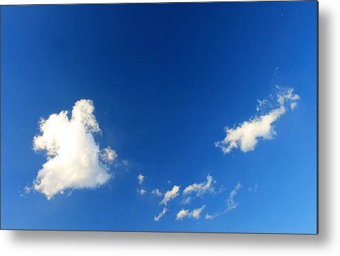 Clouds Metal Print featuring the photograph Mighty Duck by Kathleen Nash