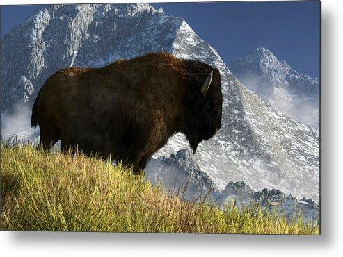 Bison Metal Print featuring the digital art Rocky Mountain Buffalo by Daniel Eskridge