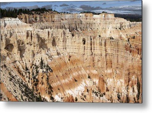 Sandra Bronstein Metal Print featuring the photograph Bryce Canyon Vista by Sandra Bronstein