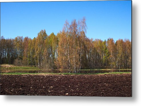 Isosuo Metal Print featuring the photograph Spring Colors by Jouko Lehto