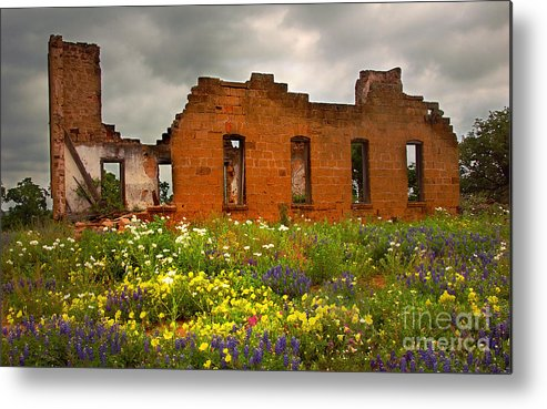 Landscape Metal Print featuring the photograph Beauty And Ashes by Jon Holiday