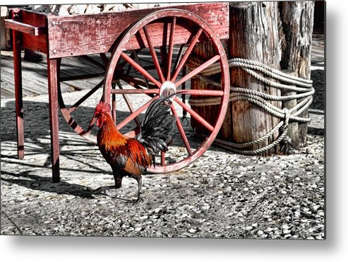 Key Metal Print featuring the photograph Bossman by JAMART Photography