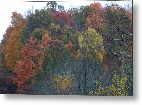 Color's Of Fall Metal Print featuring the photograph Color's Of Fall by Kevin Dunham