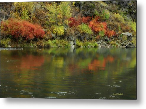 River Metal Print featuring the photograph Flow Of Autumn by Donna Blackhall