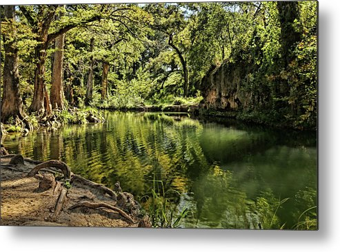 Little Cypress Creek Metal Print featuring the photograph Little Cypress Creek by Judy Vincent