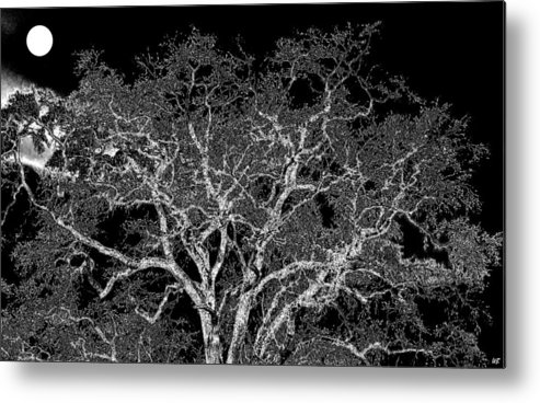 Photo Design Metal Print featuring the digital art Moonlit Night by Will Borden