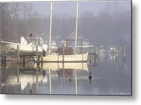 2d Metal Print featuring the photograph Morning Stroll by Brian Wallace