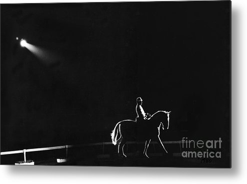 Horse Metal Print featuring the photograph Show Horse by Jim Wright