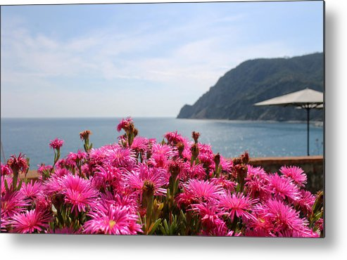 Spring Metal Print featuring the photograph Spring In Cinque Terre by Christine Buckley