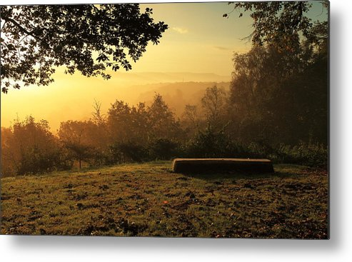 Bench Metal Print featuring the photograph Under The Tree by Weihong Zhao