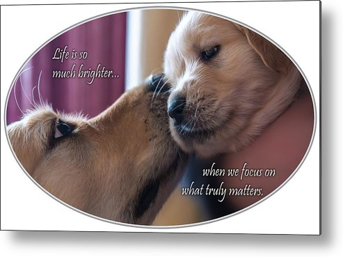 Puppy Metal Print featuring the photograph Puppy Love by Chris Whiton