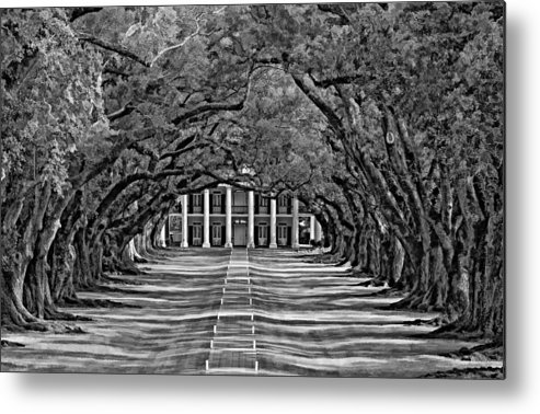 Oak Alley Plantation Metal Print featuring the photograph Oak Alley Bw by Steve Harrington
