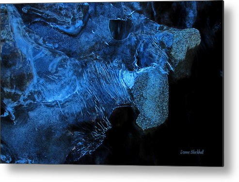 Abstract Metal Print featuring the photograph Frozen Stone Fish by Donna Blackhall