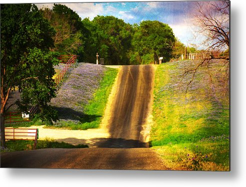 Spring Time Metal Print featuring the photograph Spring Time by Deon Grandon
