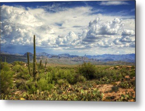 Arizona Metal Print featuring the photograph Visions Of Arizona by Saija Lehtonen