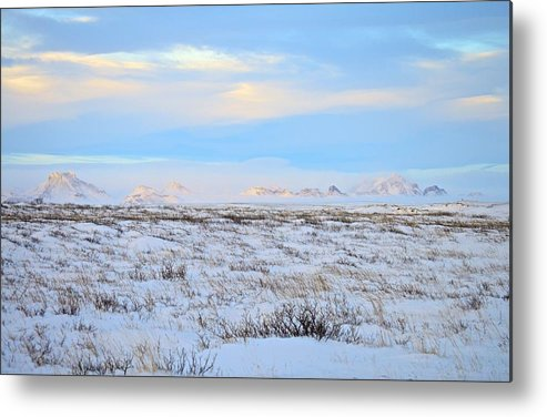 Landscape Metal Print featuring the photograph Wind Swept Plains Of Iceland by Eric Reger