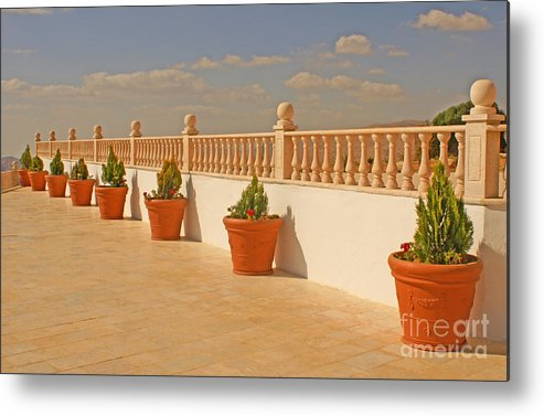 Pattern Metal Print featuring the photograph All In A Row by David Birchall