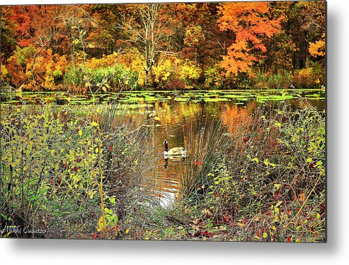 Landscape Metal Print featuring the photograph Autumn On Long Island by Mikki Cucuzzo