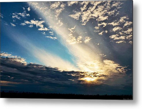 Nature Metal Print featuring the photograph Evening Rays by Debbie Portwood