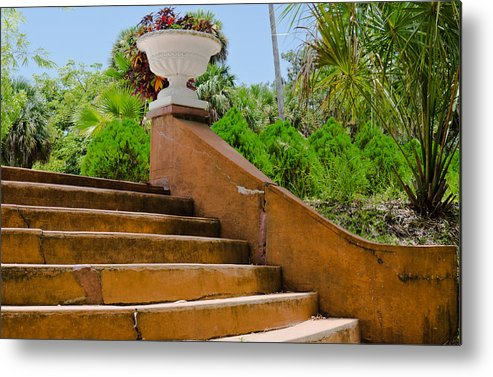 Landscapes Metal Print featuring the photograph Scenes From The Park by Mike Rivera