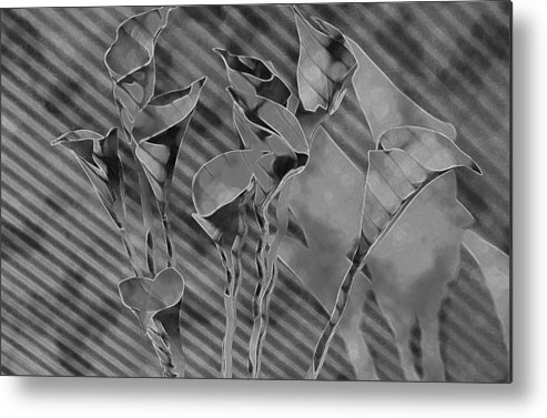 Flowers Metal Print featuring the painting Calla Lilies by Gary at TopPhotosI