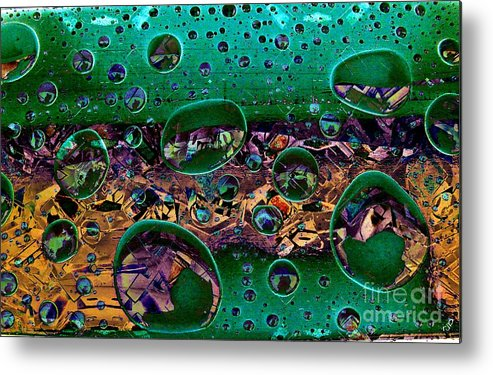 Chloroplast Metal Print featuring the photograph Chloroplasts by Ron Bissett