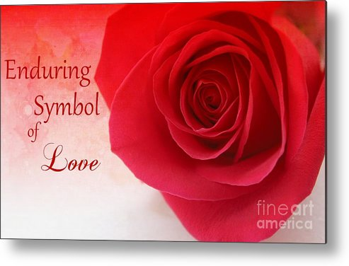 Rose Metal Print featuring the photograph Enduring Symbol Of Love by Clare Bevan