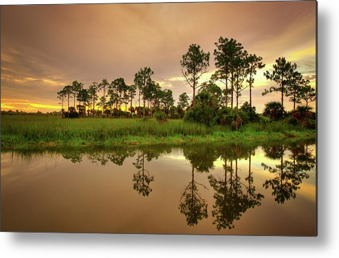 Landscapes Metal Print featuring the photograph Everglades Sunrise by Dennis Goodman