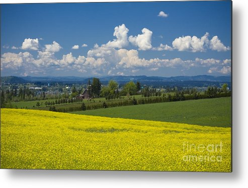 Canola Metal Print featuring the photograph Oregon Countryside by Idaho Scenic Images Linda Lantzy