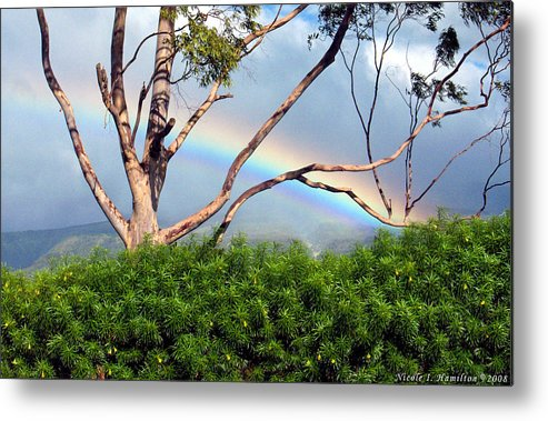 Rainbow Metal Print featuring the photograph Rainbow In The Trees by Nicole I Hamilton