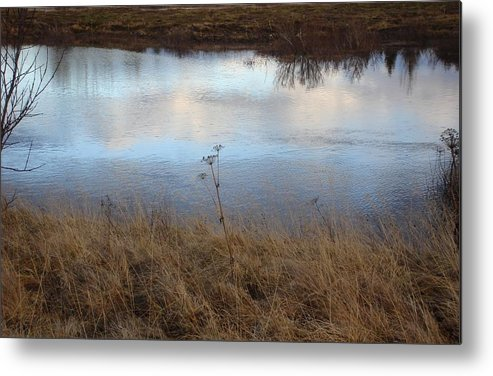 Nature Metal Print featuring the photograph Reflections by Marilynne Bull