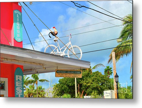 Chicken Metal Print featuring the photograph Rooster Ride by Jost Houk