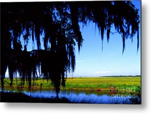 Louisiana Outback Metal Print featuring the photograph Sabine National Wildlife Refuge by Thomas R Fletcher