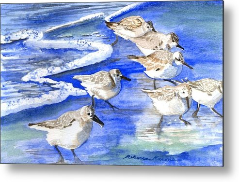 Plovers Metal Print featuring the painting Shore Birds by Rebecca Marona