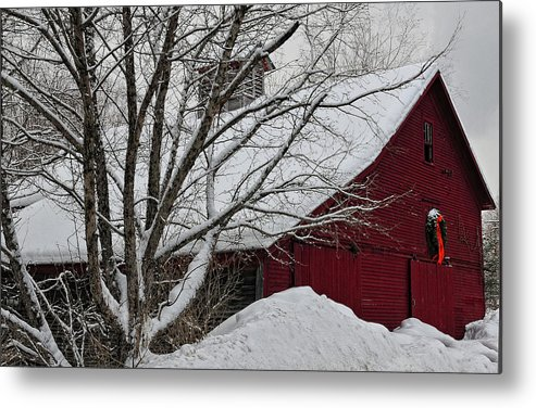 Snow Metal Print featuring the photograph Surrounded By Snow by Nancy Marshall